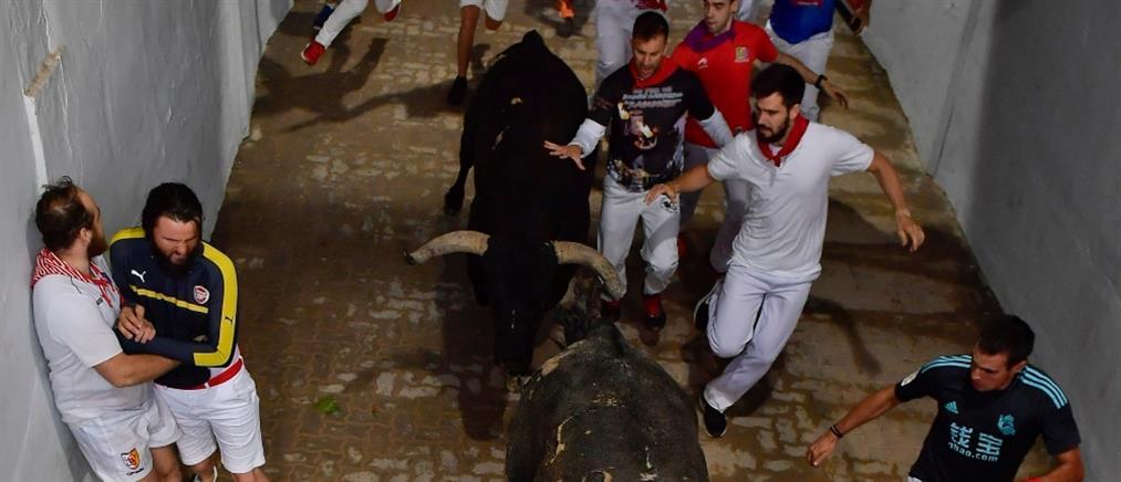 Αυλαία και τραυματίες για το Φεστιβάλ της Παμπλόνα (βίντεο)