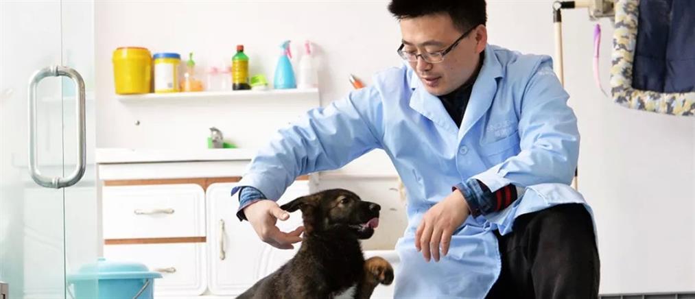 Κινέζοι κλωνοποίησαν τον πρώτο αστυνομικό σκύλο στην Ιστορία