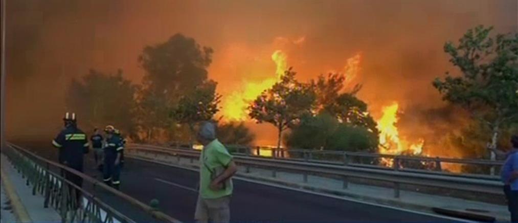 Θύελλα από την ανάρτηση Πολάκη για τους νεκρούς και τις φωτιές σε Καλιφόρνια και Μάτι