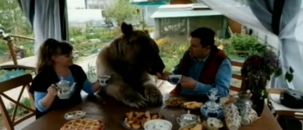 Έχουν για κατοικίδιο… μία αρκούδα! (βίντεο)