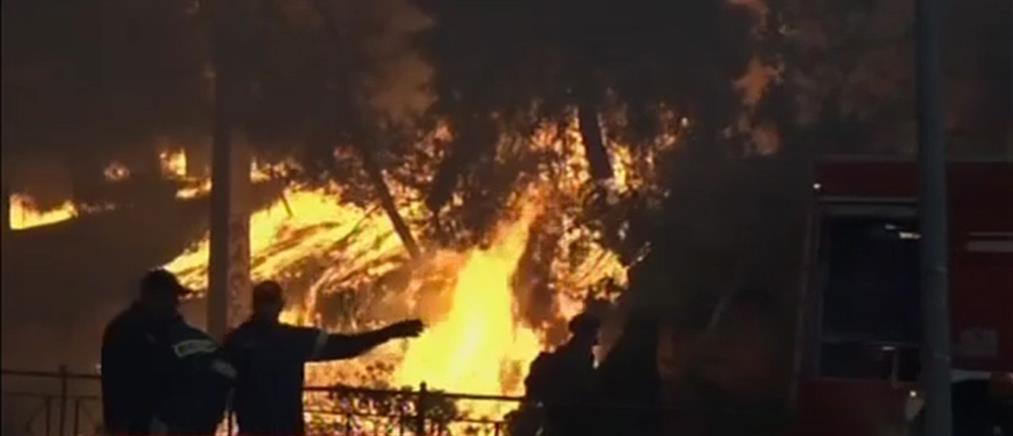 Τραγωδία στο Μάτι: συγκλονιστική αποκάλυψη από τον πρώην αρχηγό της Πυροσβεστικής (βίντεο)