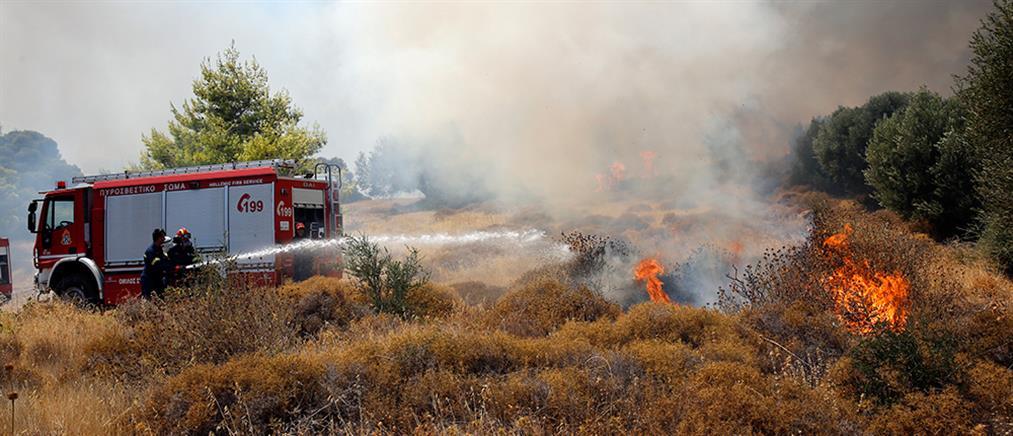 Φωτιά στα Βίλια: εκκενώσεις οικισμών