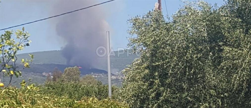 Μεγάλη φωτιά στη Μεσσηνία (εικόνες)