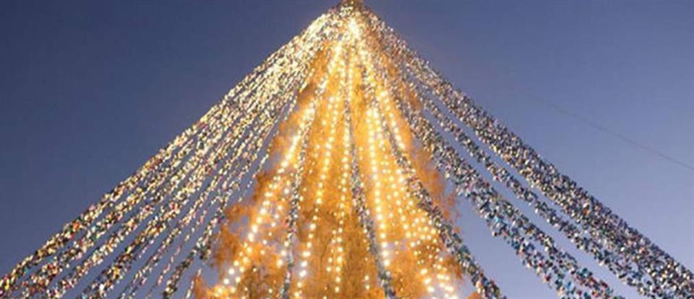 Ρεκόρ για Χριστουγεννιάτικο δέντρο στην Ιαπωνία (εικόνες)