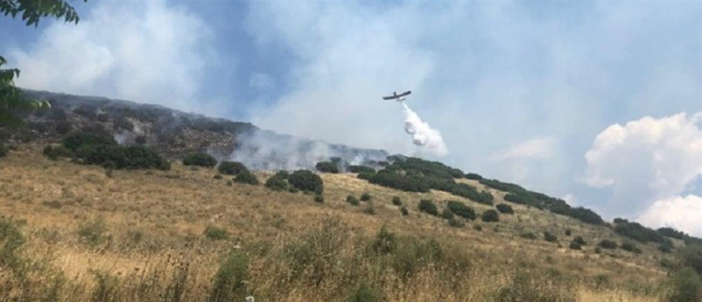 Πυρκαγιά ξέσπασε στην Καστρίτσα (εικόνες)
