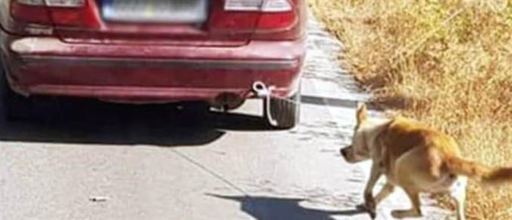 Εντοπίστηκε ο ιδιοκτήτης του αυτοκινήτου που έσερνε σκύλο στο δρόμο