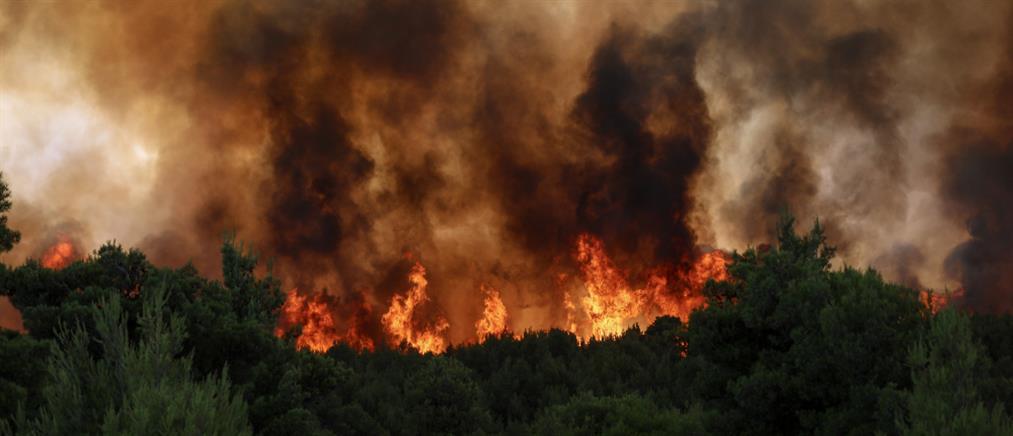 """Φωτιές: """"Κόκκινος"""" συναγερμός την Παρασκευή στη μισή Ελλάδα"""