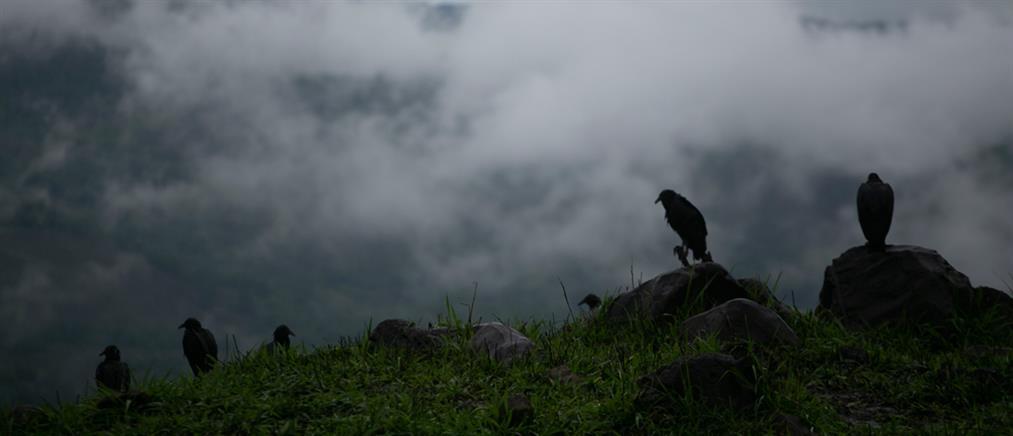 Φονικό το πέρασμα τροπικών καταιγίδων από την κεντρική Αμερική (εικόνες)