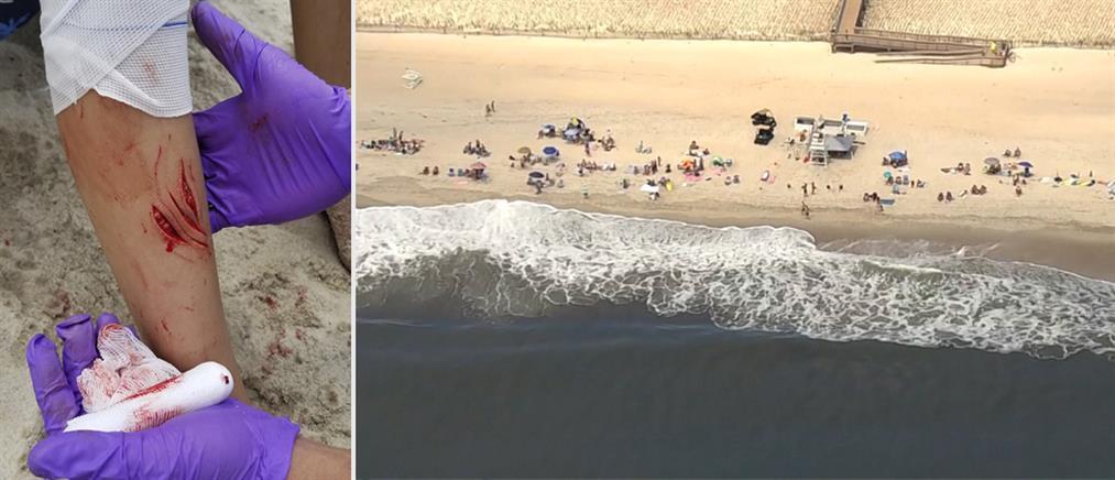 Επιθέσεις από καρχαρίες στη Νέα Υόρκη (βίντεο)