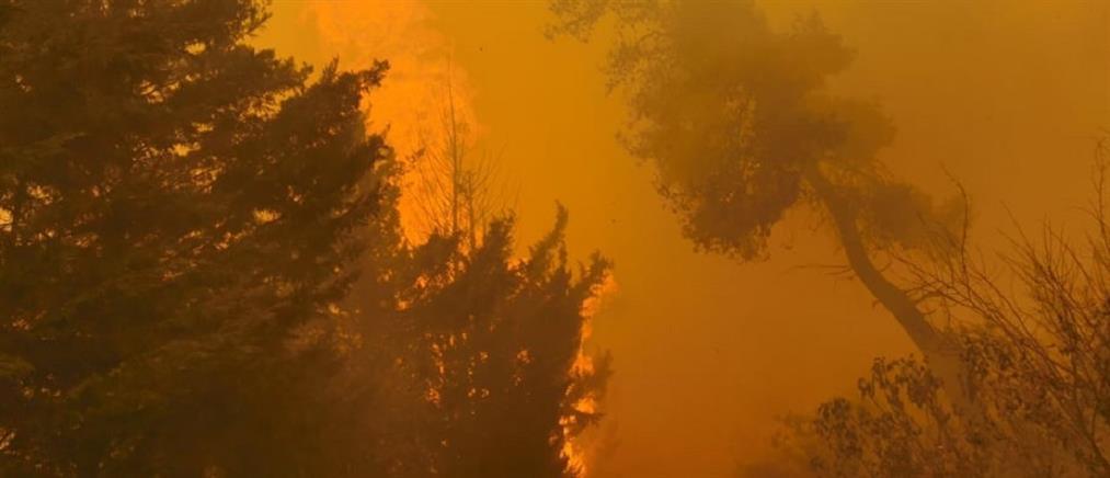 Φωτιές - ΓΓΠΠ: Πολύ αυξημένος κίνδυνος την Πέμπτη (χάρτης)
