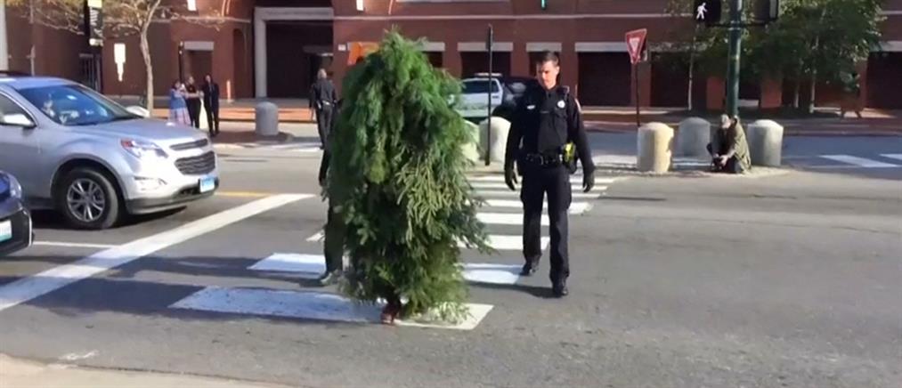 """Άνδρας – """"δέντρο"""" προκάλεσε κυκλοφοριακό χάος (βίντεο)"""