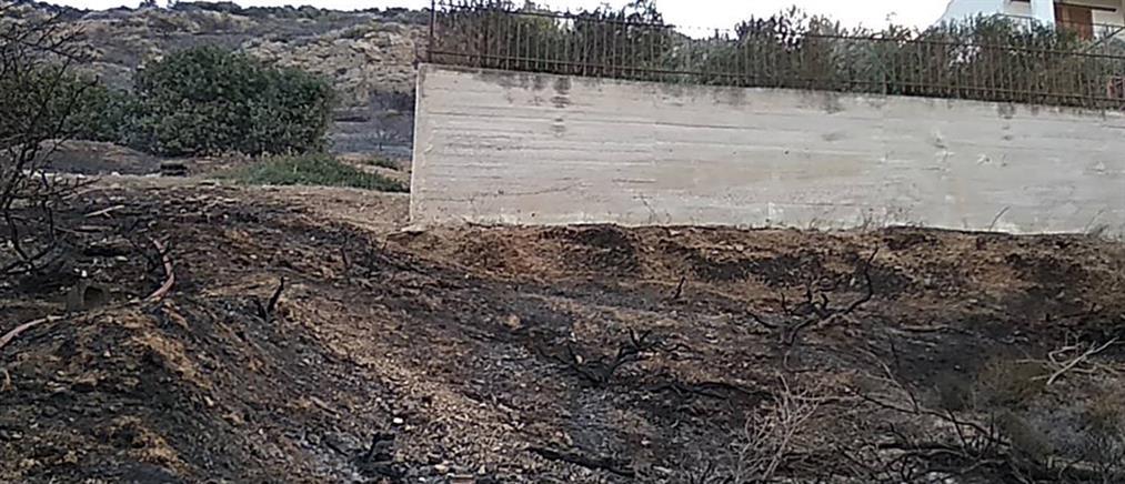 Βελτιωμένη η εικόνα της φωτιάς στο Πόρτο Ράφτη (εικόνες)