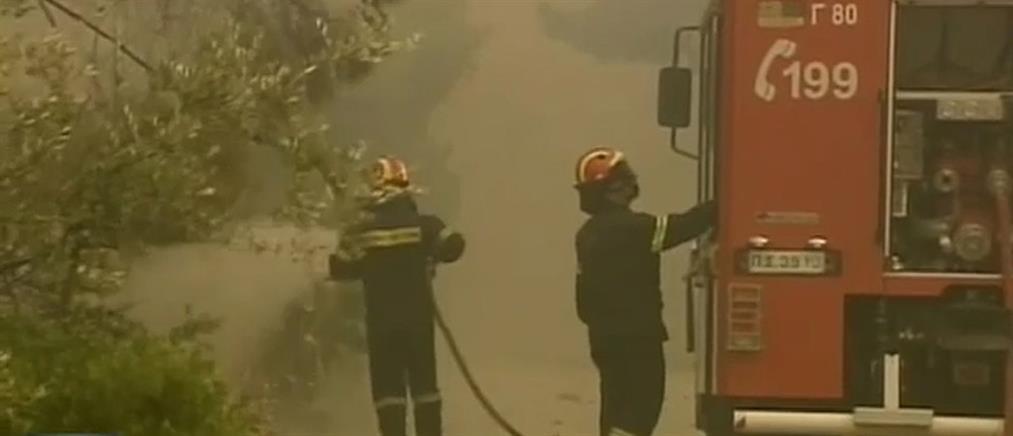 Οι πυροσβέστες έσβηναν τη φωτιά και οι Ρομά τους ...έκλεβαν!