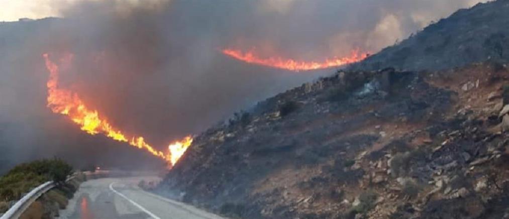 Φωτιά στην Άνδρο: εκκενώθηκαν οικισμοί