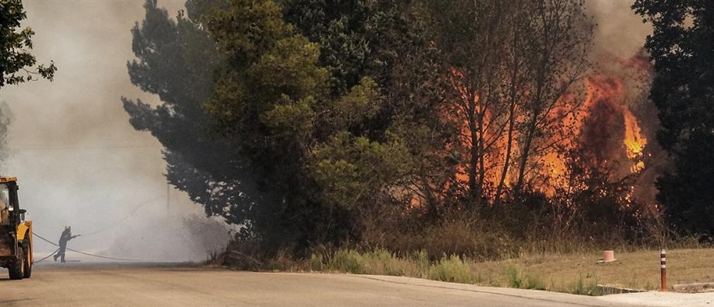 Μεγάλη δασική πυρκαγιά στην Πάρνηθα