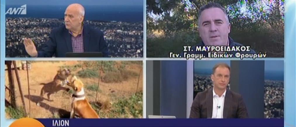 Μαυροειδάκος στον ΑΝΤ1: δεν λειτουργούσαν οι ασύρματοι των αστυνομικών που δέχθηκαν επίθεση (βίντεο)