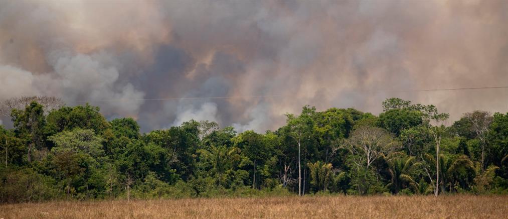 Ρεκόρ πυρκαγιών σε Αμαζόνιο και Παντανάλ