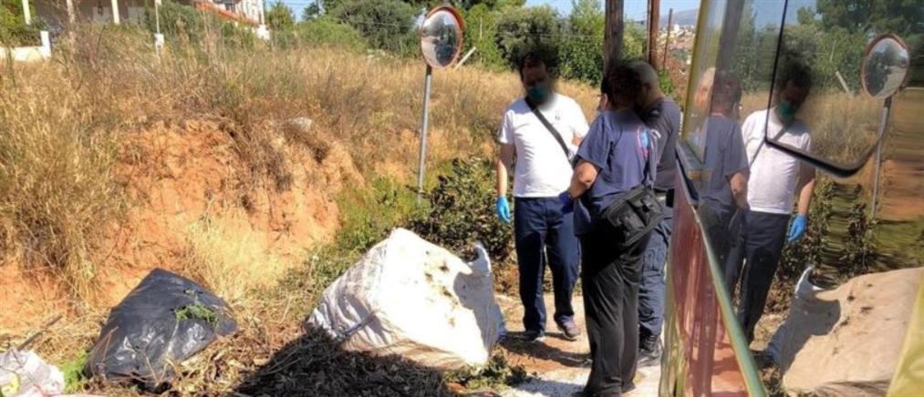 Λαγονήσι: γυναίκα βρέθηκε νεκρή δίπλα σε κάδους σκουπιδιών