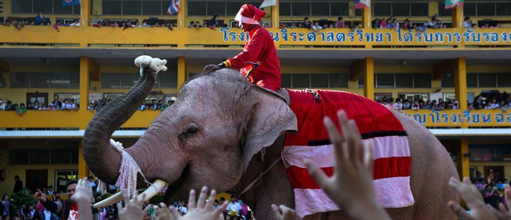 Ο Αη Βασίλης ήρθε πάνω σε ελέφαντα!