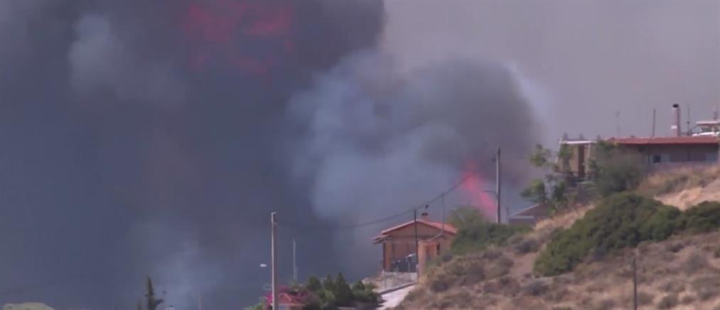 Πυρκαγιά στα Καλύβια Αττικής
