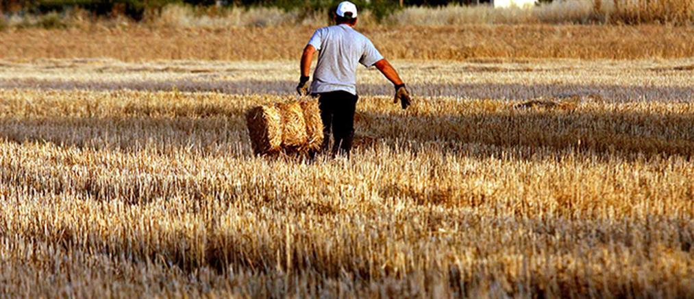 Στην Καρδίτσα μπήκαν οι βάσεις για τη χρήση μεθόδων γεωργίας ακριβείας