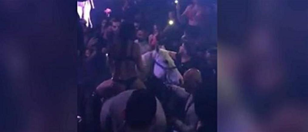Σόου ημίγυμνης χορεύτριας πάνω σε άλογο κατέληξε σε φιάσκο (βίντεο)