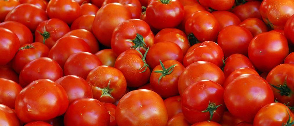 Κατασχέθηκαν 2,8 τόνοι ντομάτας