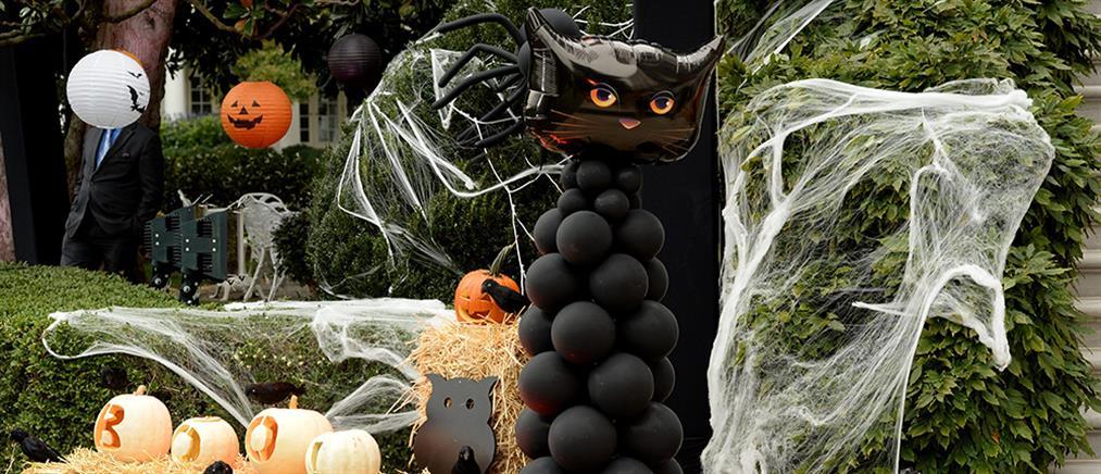Halloween: Συνταγή για τέλεια muffins σε σχήμα αράχνης