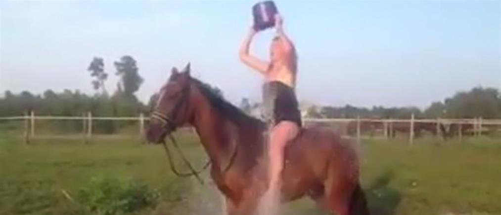 Το πιο... κουτό Ice Bucket Challenge