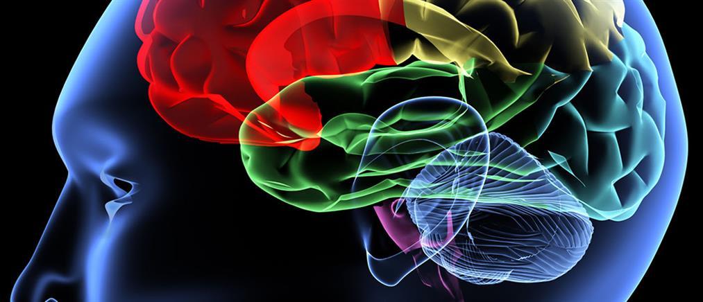 """Έλληνας ερευνητής ρίχνει """"φως"""" στην επιθετικότητα του εγκεφάλου"""