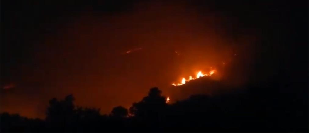 Εκκενώθηκαν κατασκηνώσεις λόγω πυρκαγιάς