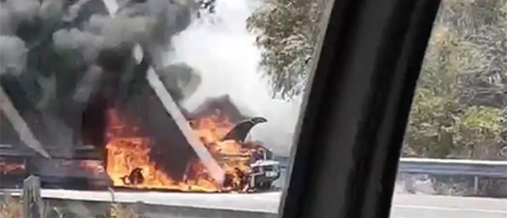 """Φωτιά στην Κύπρο: """"Μάχη"""" με τις φλόγες (εικόνες)"""