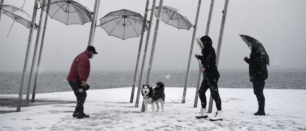 """""""Λέανδρος"""": Χιόνια στο κέντρο της Θεσσαλονίκης (εικόνες)"""