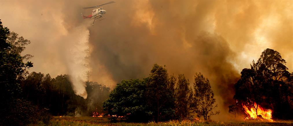 Σε αριθμό ρεκόρ οι πυρκαγιές στην Αυστραλία