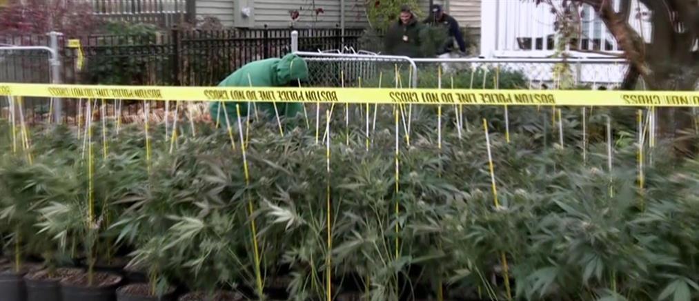 Κορονοϊός: το Οντάριο αφαίρεσε την μαριχουάνα από τη λίστα προϊόντων βασικής ανάγκης