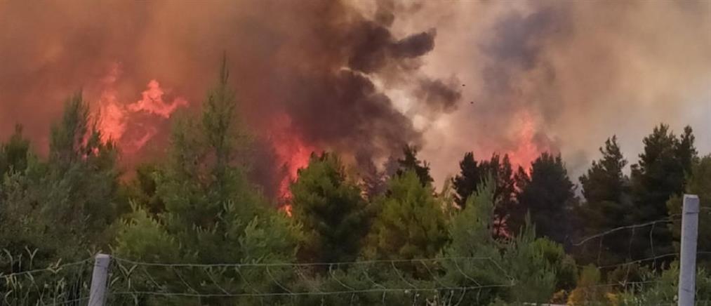 Πυρκαγιά στο Μαρτίνο, κοντά στην Εθνική Οδό