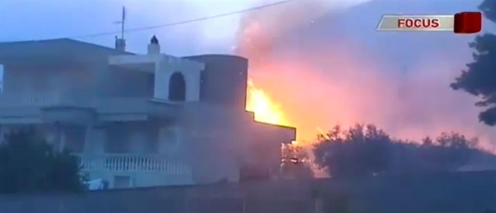 Οδοιπορικό του ΑΝΤ1 στην Κινέτα έναν χρόνο μετά τη μεγάλη φωτιά (βίντεο)