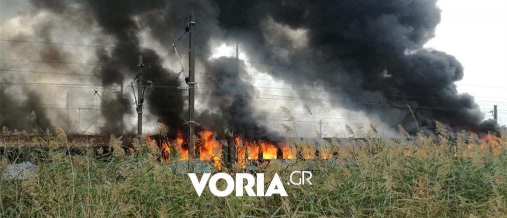 Φωτιά σε βαγόνια του ΟΣΕ (βίντεο)