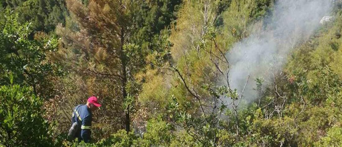 Φωτιά στην Αταλάντη