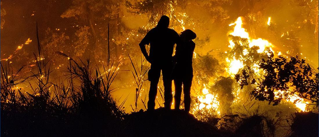 φωτιά - Βόρεια Εύβοια