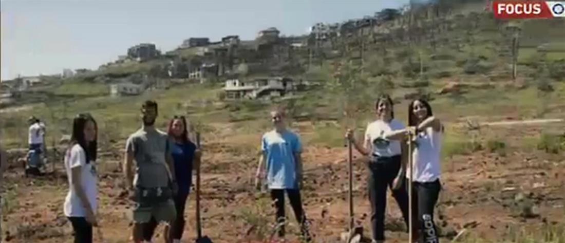 Τρία χρόνια από τη φωτιά στο Μάτι: Οι νέοι χαρίζουν καθημερινά την ελπίδα (βίντεο)