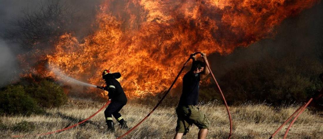 Μέτωπα φωτιάς στην Πελοπόννησο