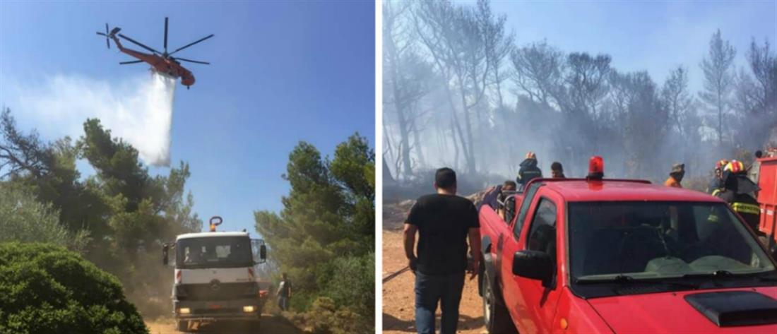 Φωτιά στην Ραφήνα - Μέτωπο και στον Βαρνάβα