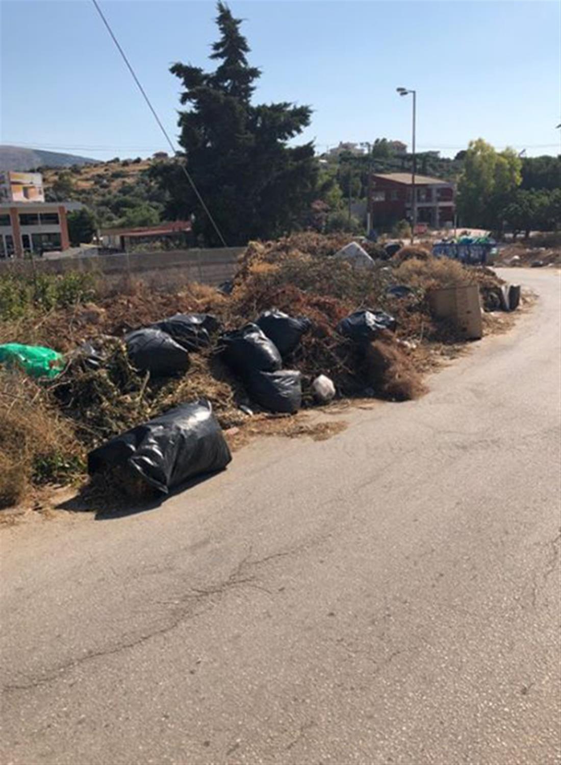 σκουπίδια - χόρτα - λεωφόρος Πόρτο Ράφτη - Αγίου Γεωργίου