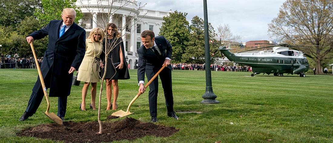 """""""Νεκρό"""" το δέντρο φιλίας Τραμπ - Μακρόν"""