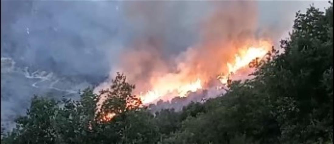 Φωτιά στην Κεφαλονιά: Η εικόνα της καταστροφής από δορυφόρο