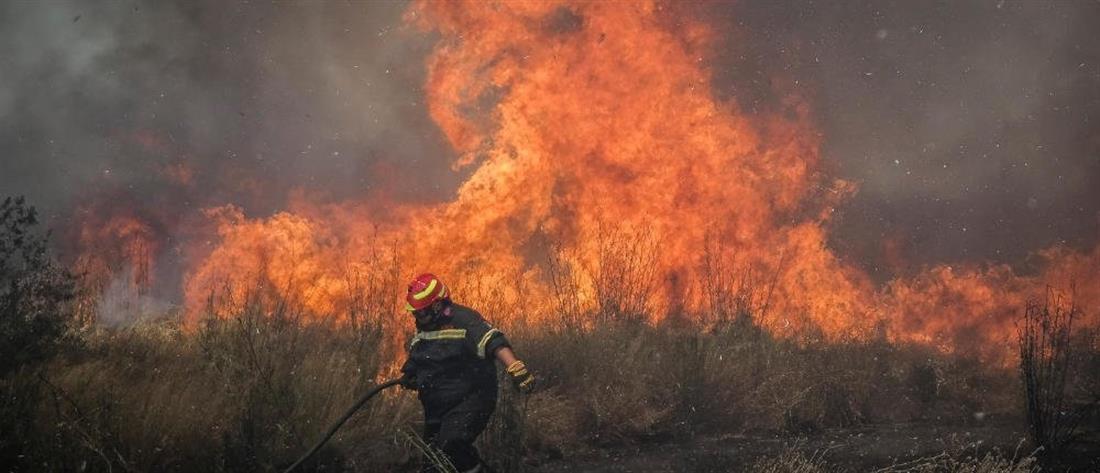 Φωτιά στην Κεραμιδέζα Μάνδρας