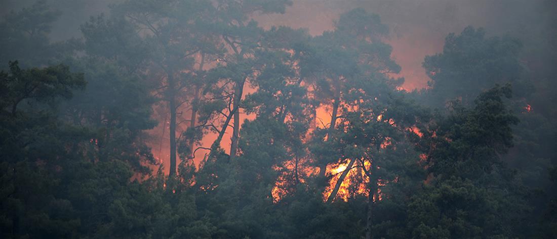 Τουρκία: Φωτιά στην Αττάλεια - Τραυματίες και καμμένα σπίτια