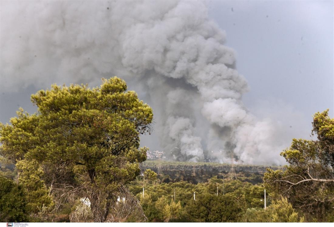 Φωτιά - Βαρυμπόμπη - Κρυονέρι - Ιπποκράτειος Πολιτεία
