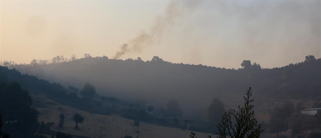 Πυρκαγιά στην Εύβοια: Αναζωπύρωση στο Μακρυμάλλη